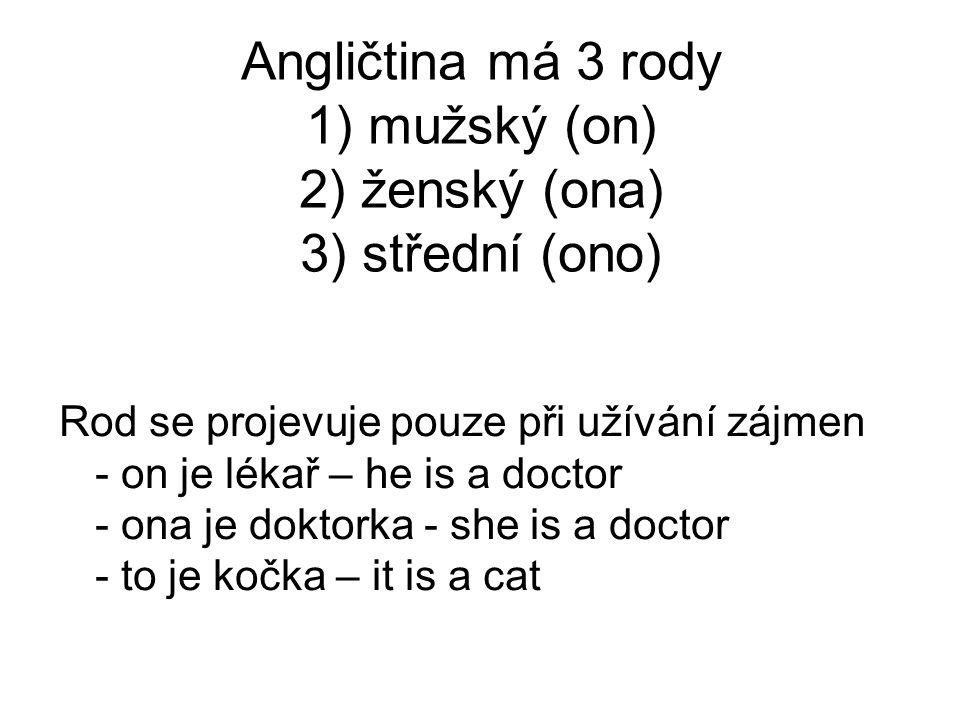 Angličtina má 3 rody 1) mužský (on) 2) ženský (ona) 3) střední (ono)
