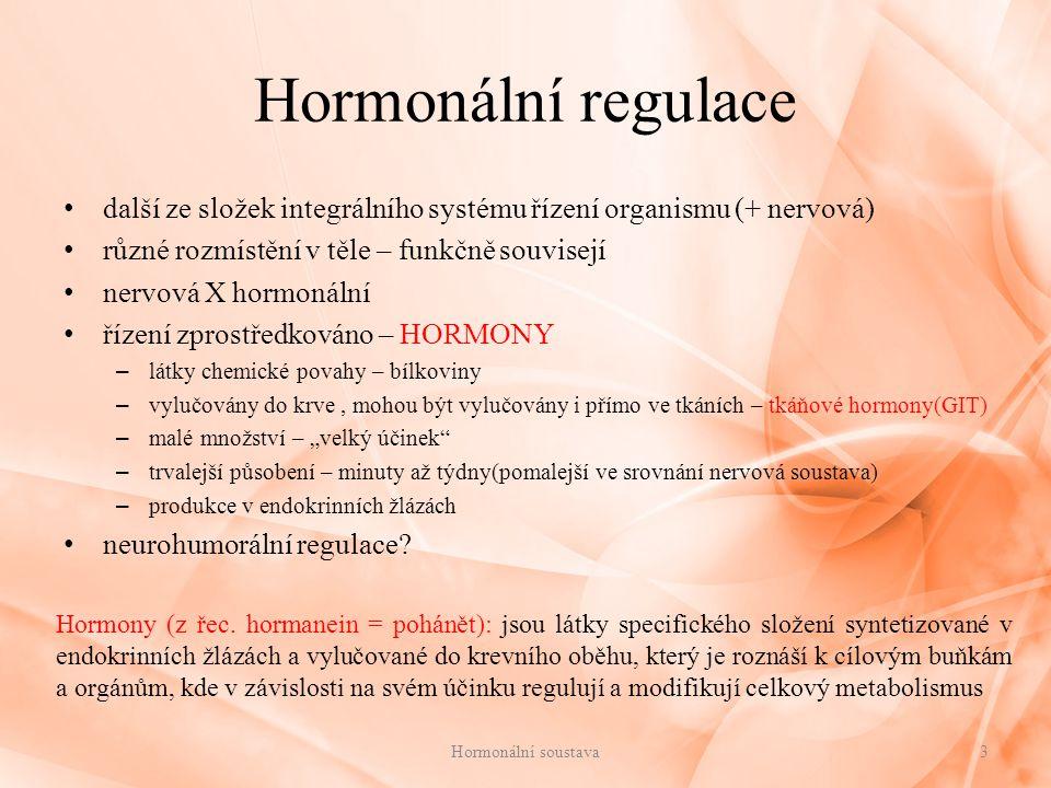Hormonální regulace další ze složek integrálního systému řízení organismu (+ nervová) různé rozmístění v těle – funkčně souvisejí.