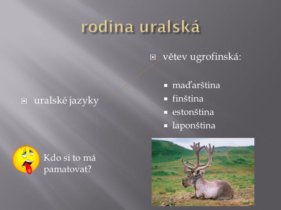 rodina uralská větev ugrofinská: uralské jazyky maďarština finština