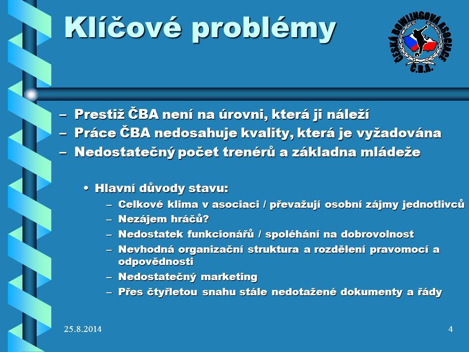 Klíčové problémy Prestiž ČBA není na úrovni, která ji náleží