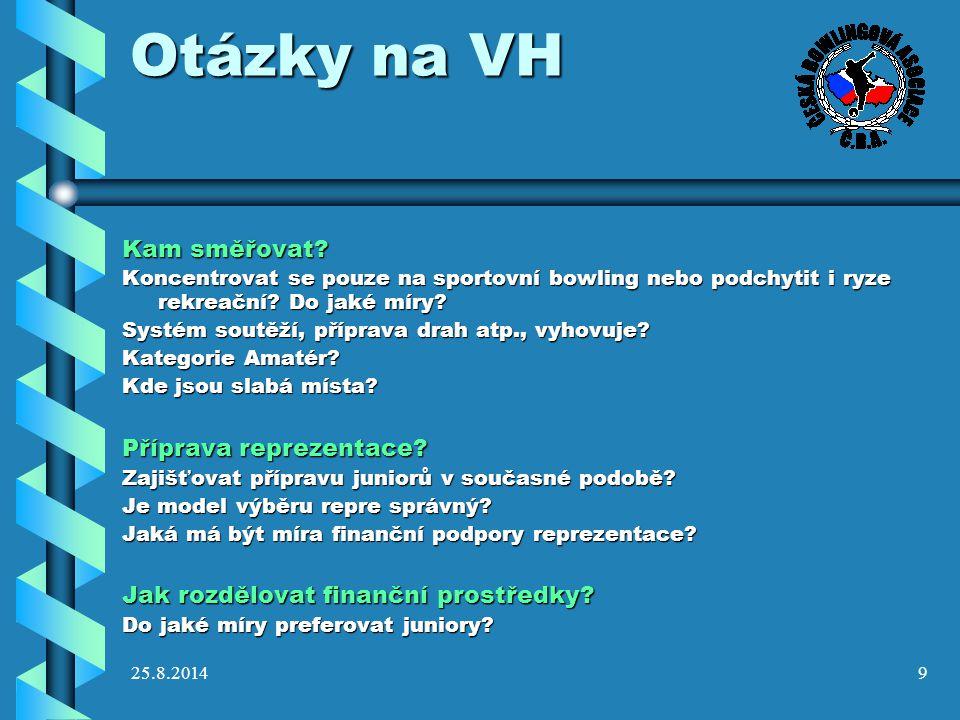 Otázky na VH Kam směřovat Příprava reprezentace