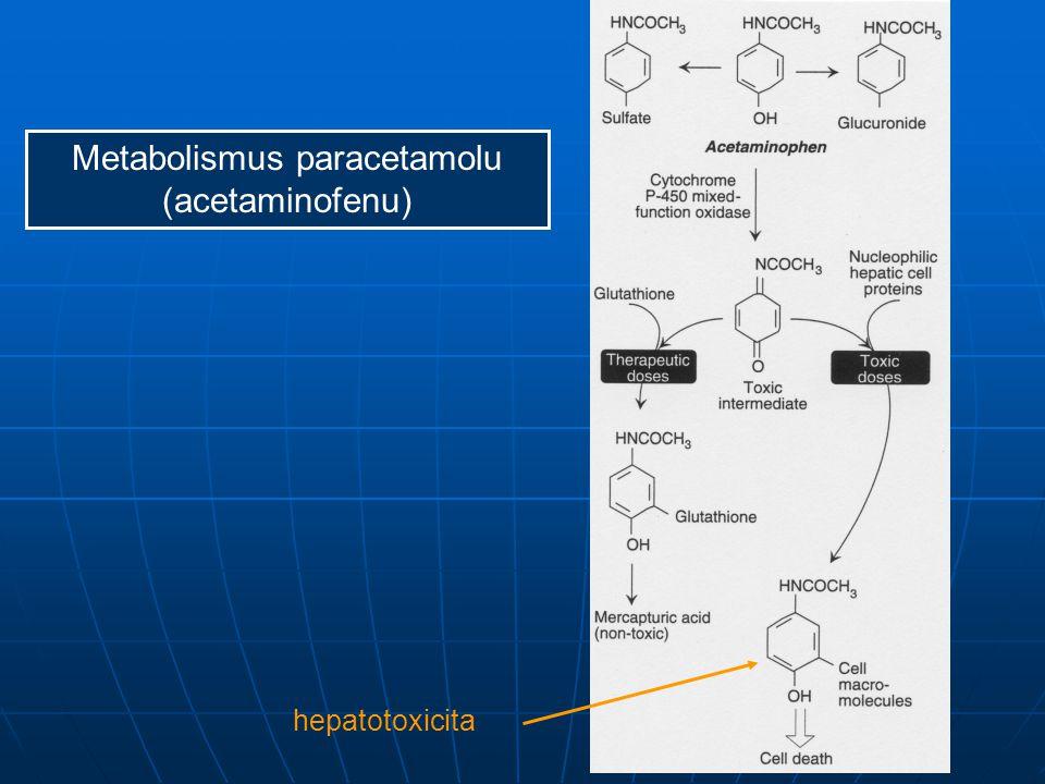 Metabolismus paracetamolu (acetaminofenu)