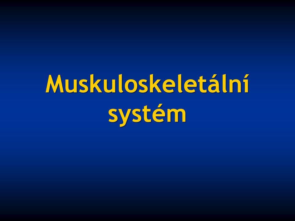Muskuloskeletální systém