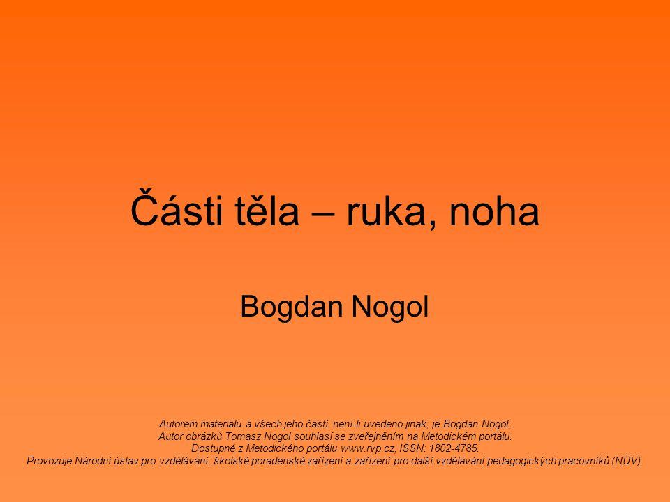 Části těla – ruka, noha Bogdan Nogol
