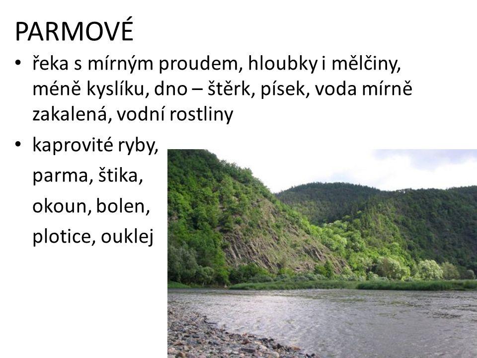 PARMOVÉ řeka s mírným proudem, hloubky i mělčiny, méně kyslíku, dno – štěrk, písek, voda mírně zakalená, vodní rostliny.