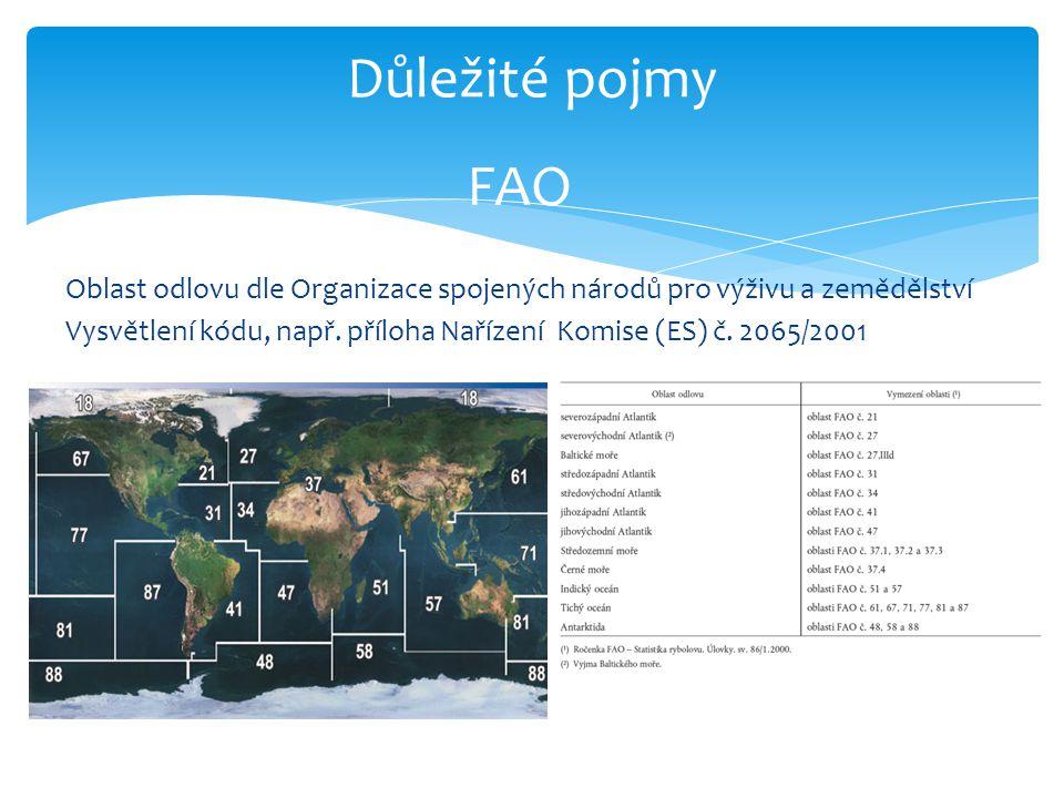 Důležité pojmy FAO.