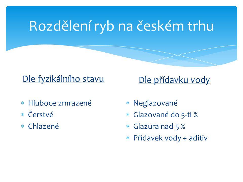 Rozdělení ryb na českém trhu