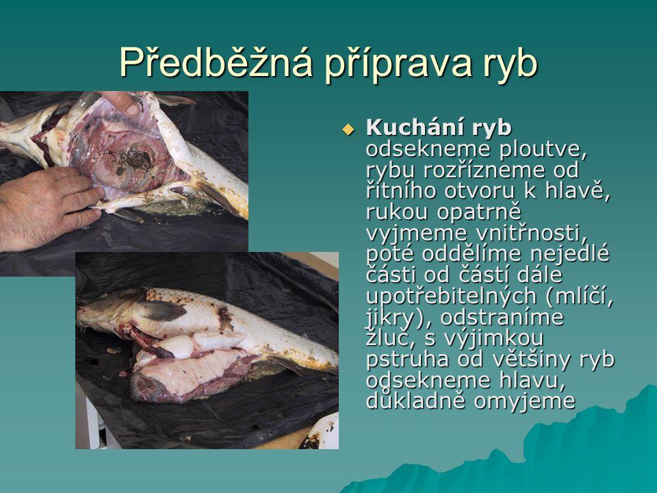 Předběžná příprava ryb