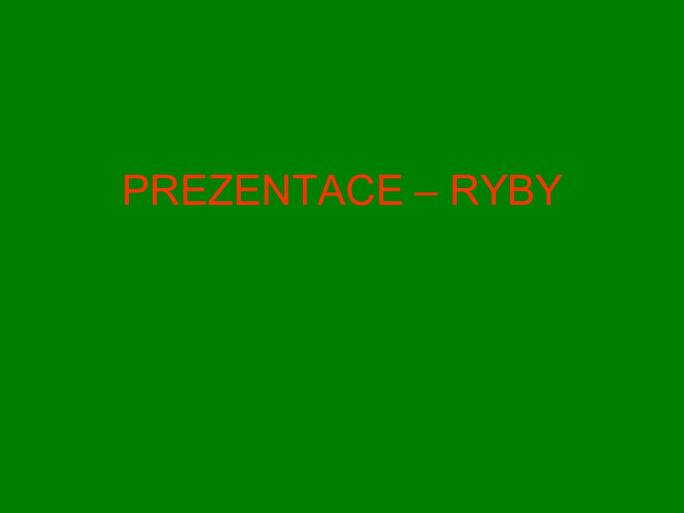 PREZENTACE – RYBY