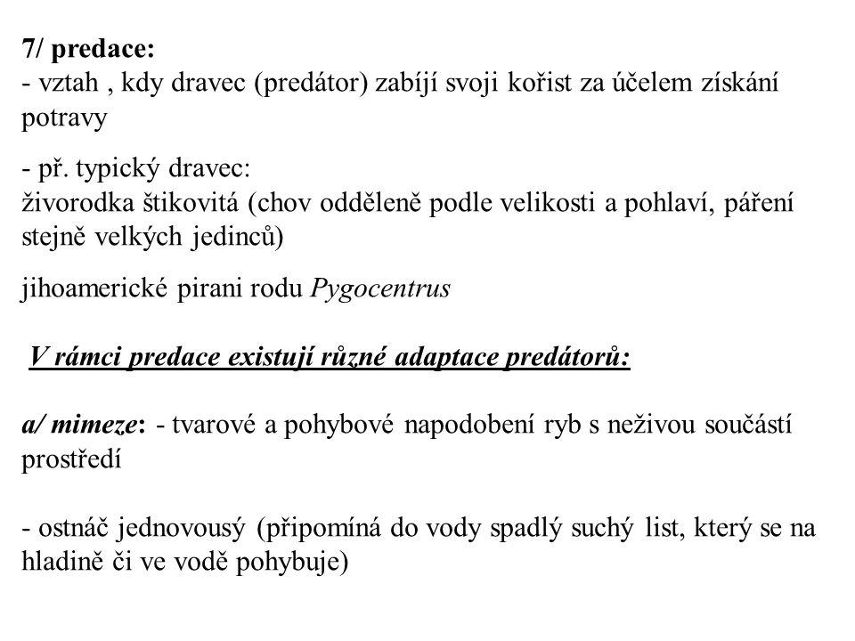 7/ predace: vztah , kdy dravec (predátor) zabíjí svoji kořist za účelem získání potravy. - př. typický dravec: