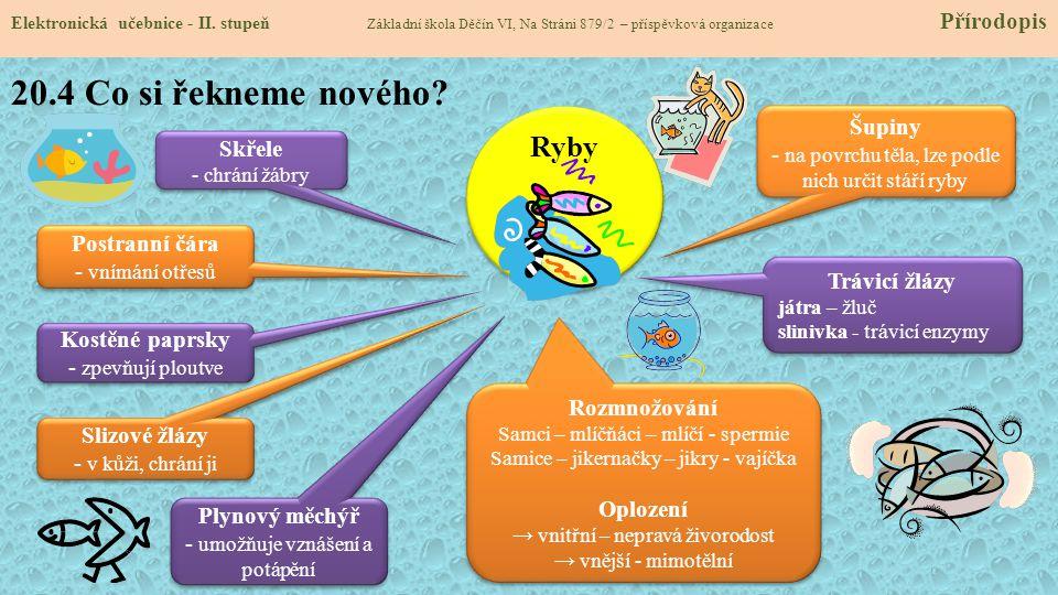 20.4 Co si řekneme nového Ryby Šupiny