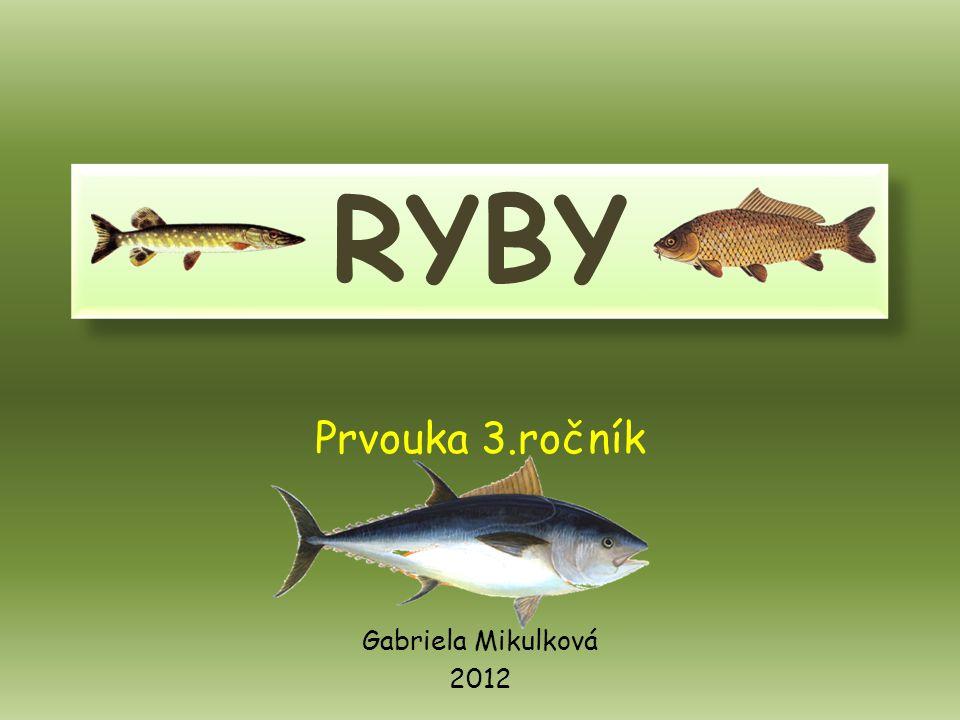 Prvouka 3.ročník Gabriela Mikulková 2012