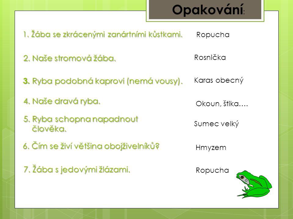 Opakování: 2. Naše stromová žába.