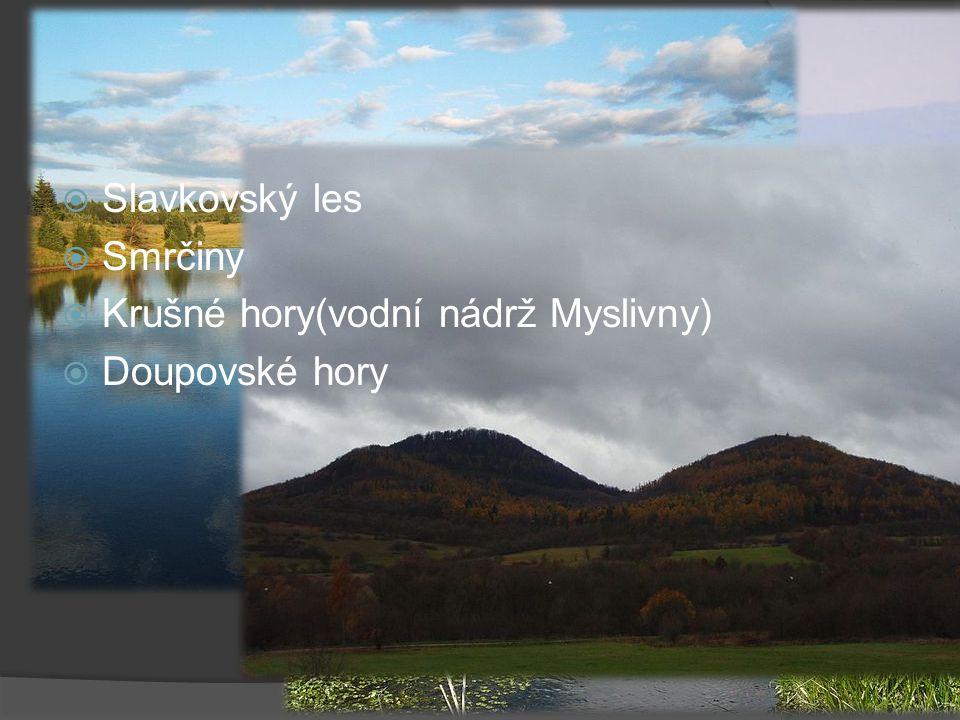Fotografie lokalit Slavkovský les Smrčiny