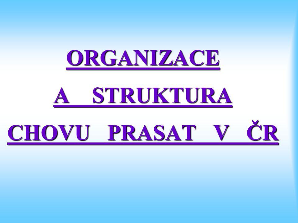 ORGANIZACE A STRUKTURA CHOVU PRASAT V ČR