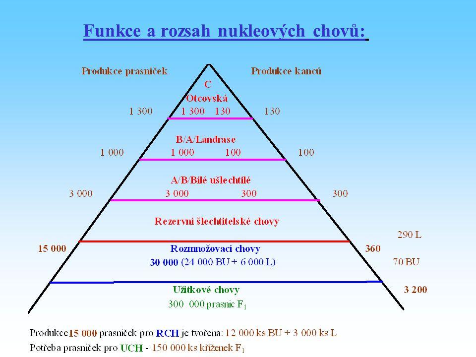 Funkce a rozsah nukleových chovů: