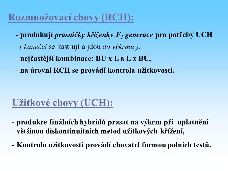 Rozmnožovací chovy (RCH):