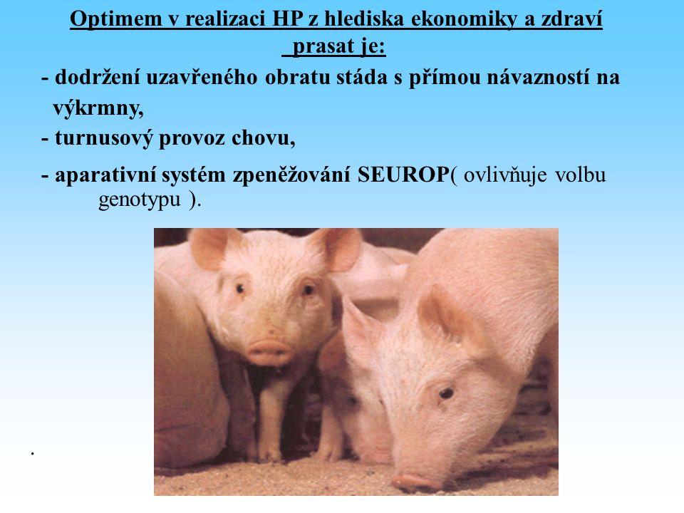 Optimem v realizaci HP z hlediska ekonomiky a zdraví