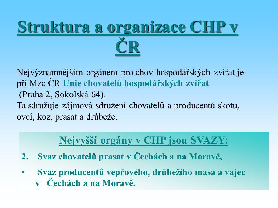 Struktura a organizace CHP v ČR