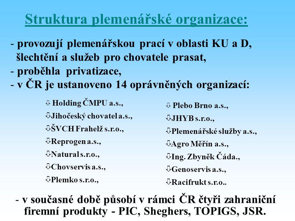 Struktura plemenářské organizace: