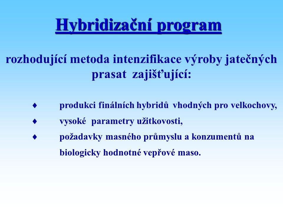 rozhodující metoda intenzifikace výroby jatečných prasat zajišťující: