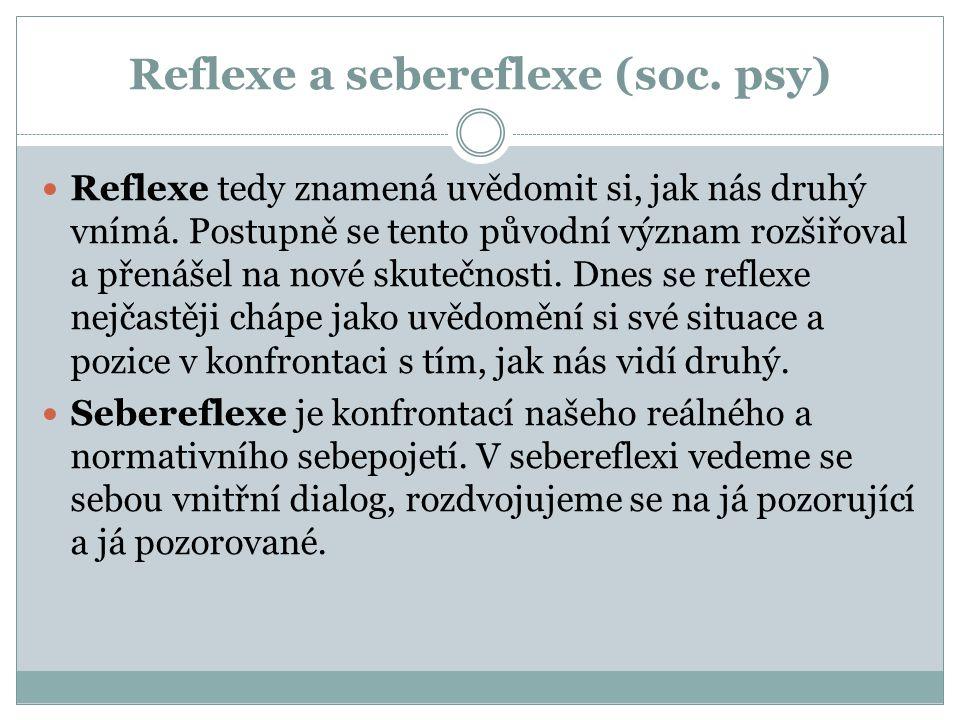 Reflexe a sebereflexe (soc. psy)
