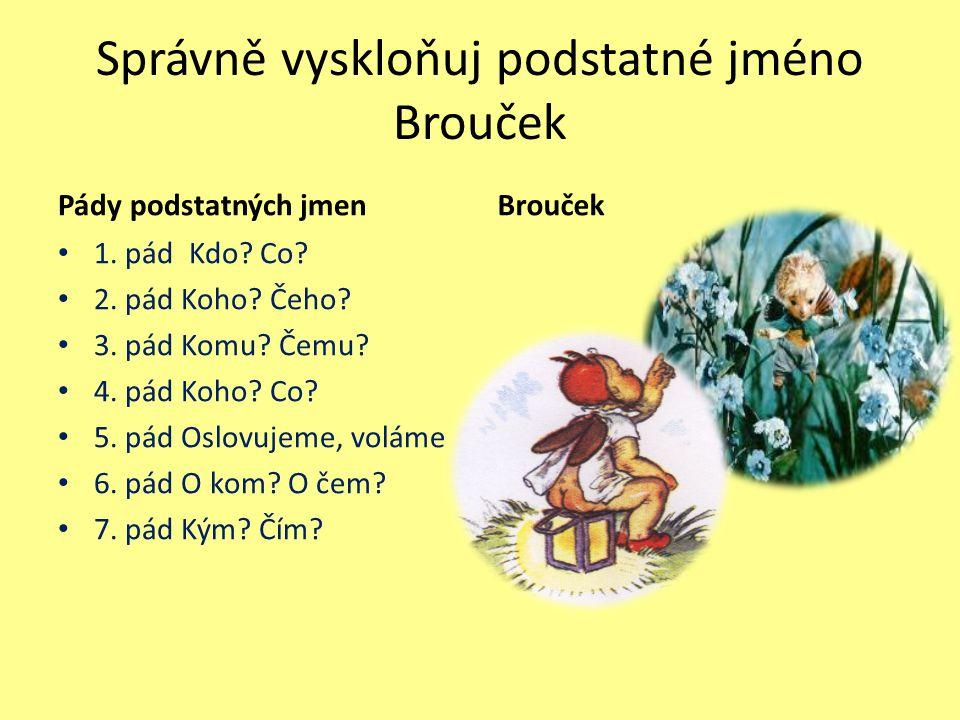 Správně vyskloňuj podstatné jméno Brouček