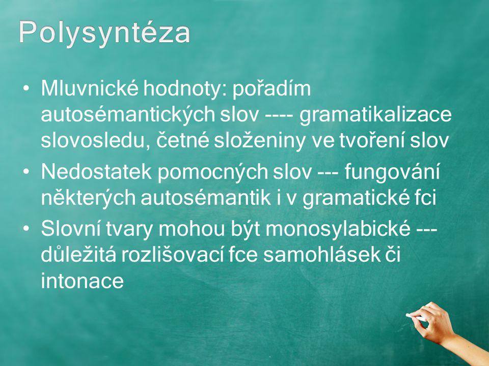 Polysyntéza Mluvnické hodnoty: pořadím autosémantických slov ---- gramatikalizace slovosledu, četné složeniny ve tvoření slov.