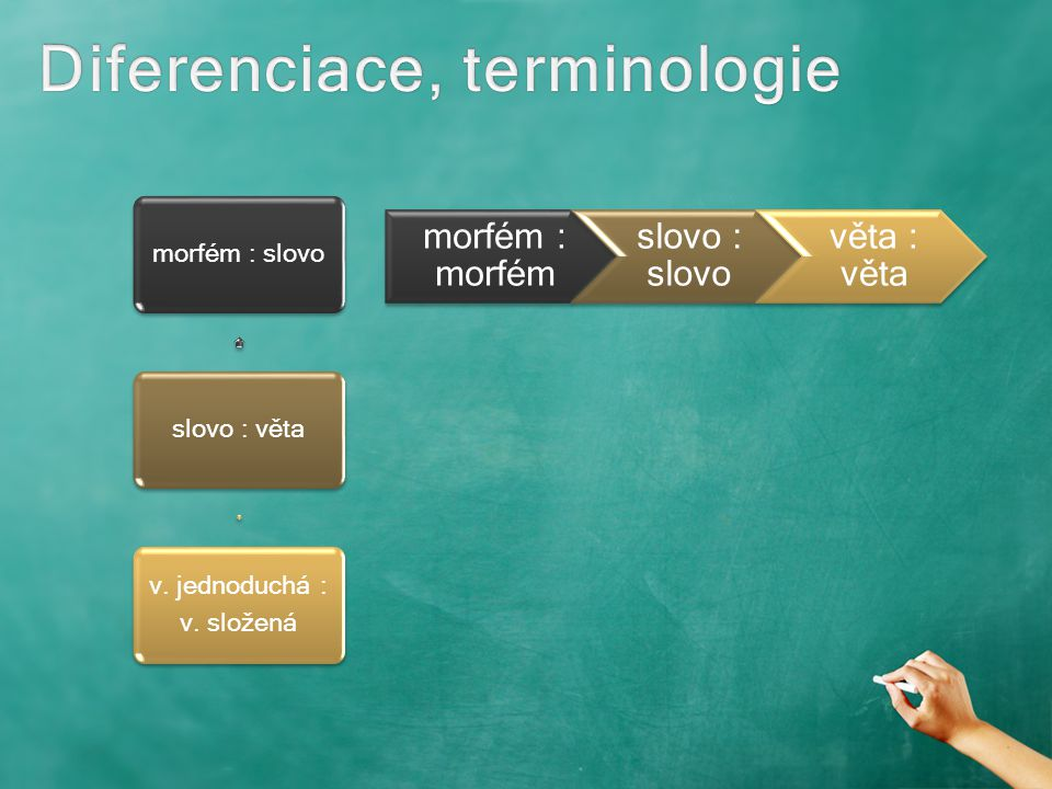 Diferenciace, terminologie