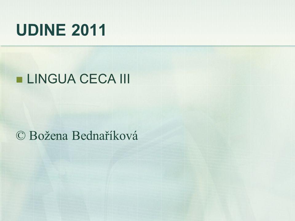 UDINE 2011 LINGUA CECA III © Božena Bednaříková