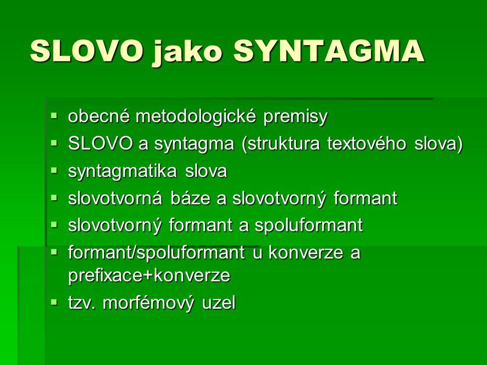 SLOVO jako SYNTAGMA obecné metodologické premisy