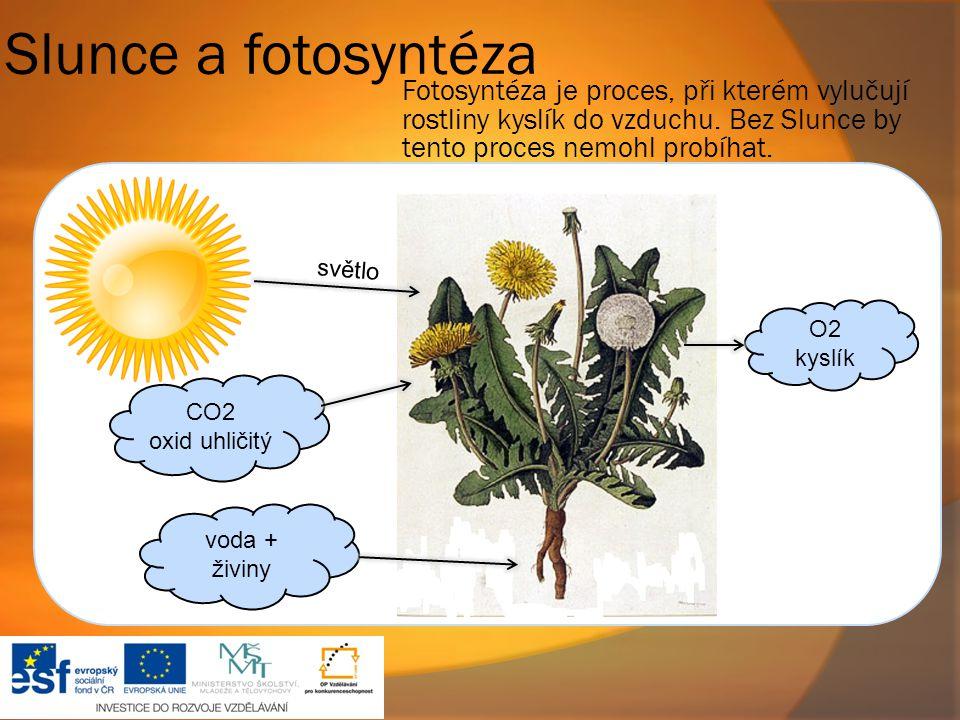 Slunce a fotosyntéza Fotosyntéza je proces, při kterém vylučují rostliny kyslík do vzduchu. Bez Slunce by tento proces nemohl probíhat.