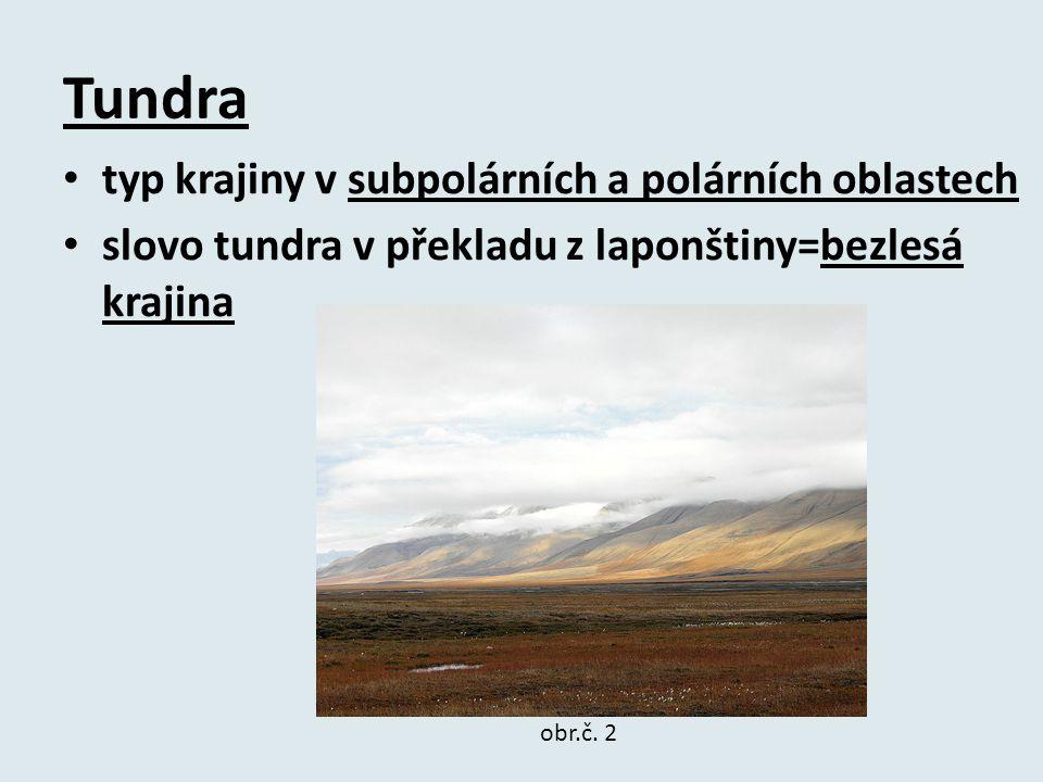 Tundra typ krajiny v subpolárních a polárních oblastech