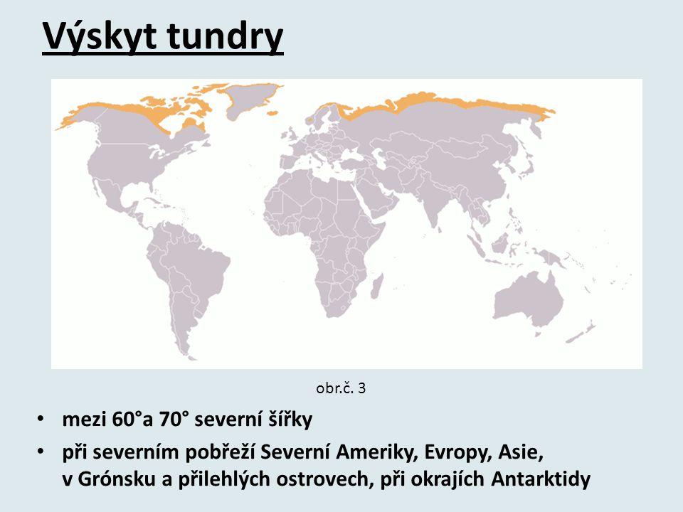 Výskyt tundry mezi 60°a 70° severní šířky