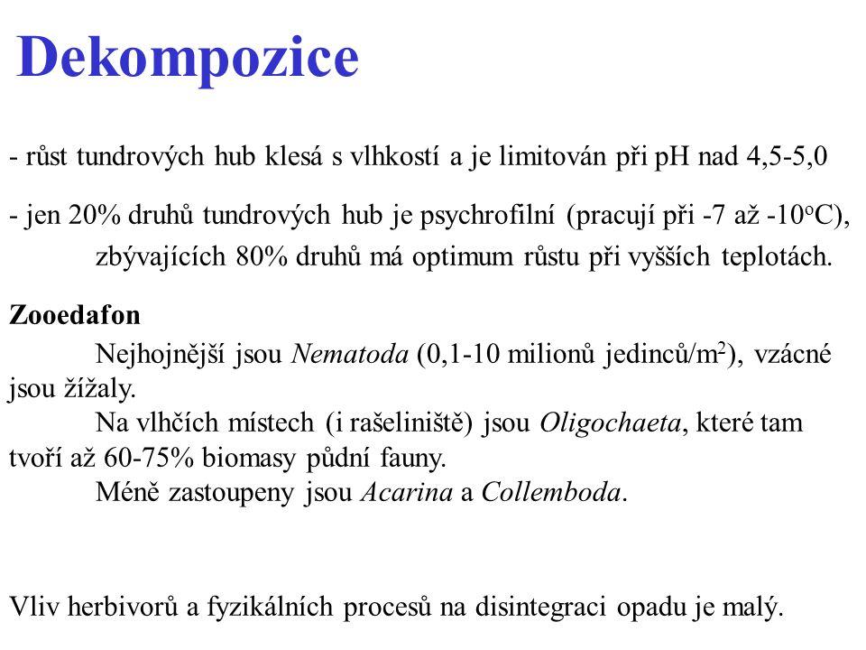 Dekompozice - růst tundrových hub klesá s vlhkostí a je limitován při pH nad 4,5-5,0.