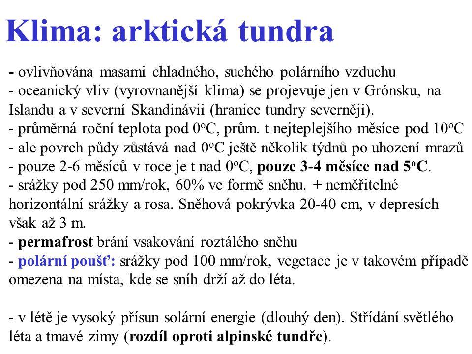 Klima: arktická tundra