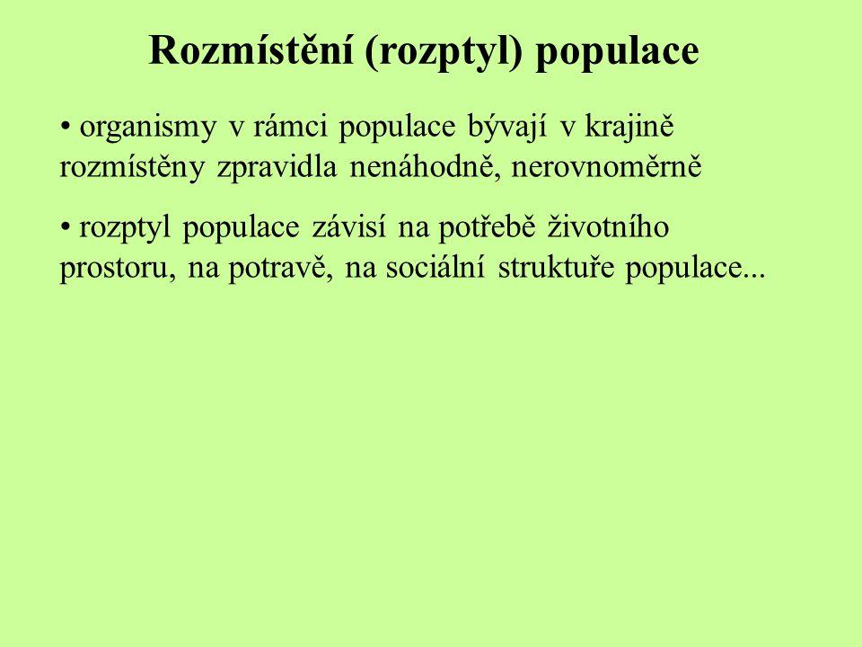 Rozmístění (rozptyl) populace