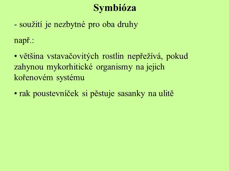 Symbióza soužití je nezbytné pro oba druhy např.: