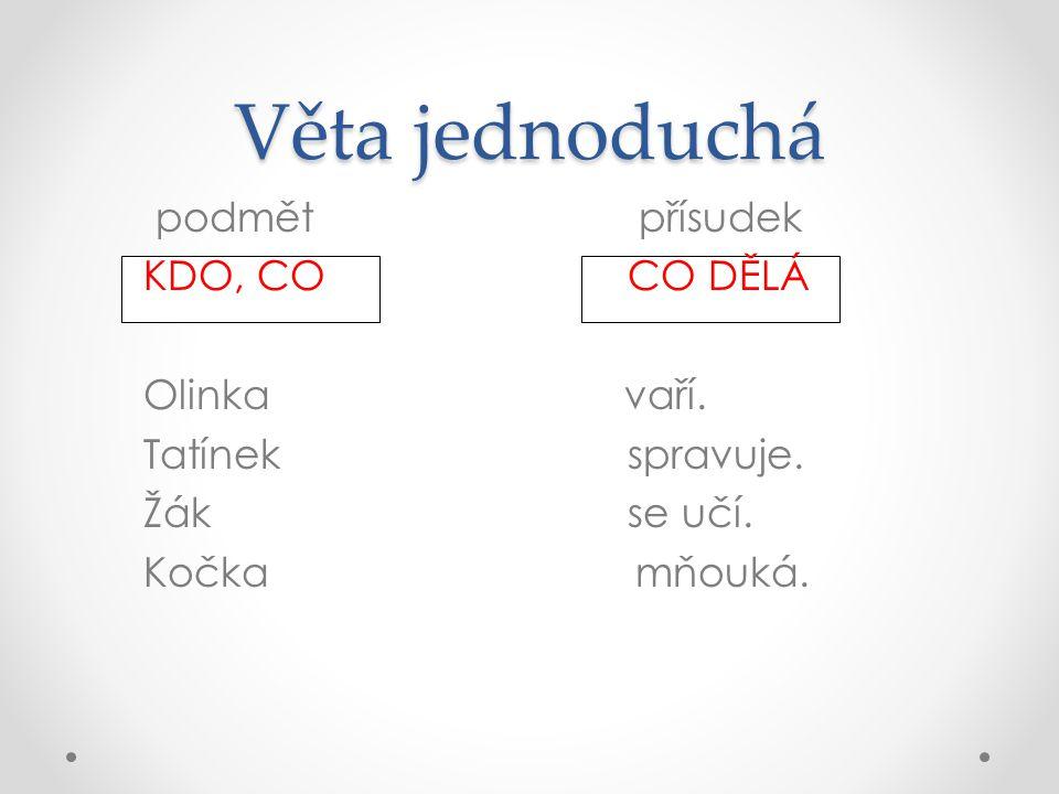 Věta jednoduchá podmět přísudek KDO, CO CO DĚLÁ Olinka vaří.