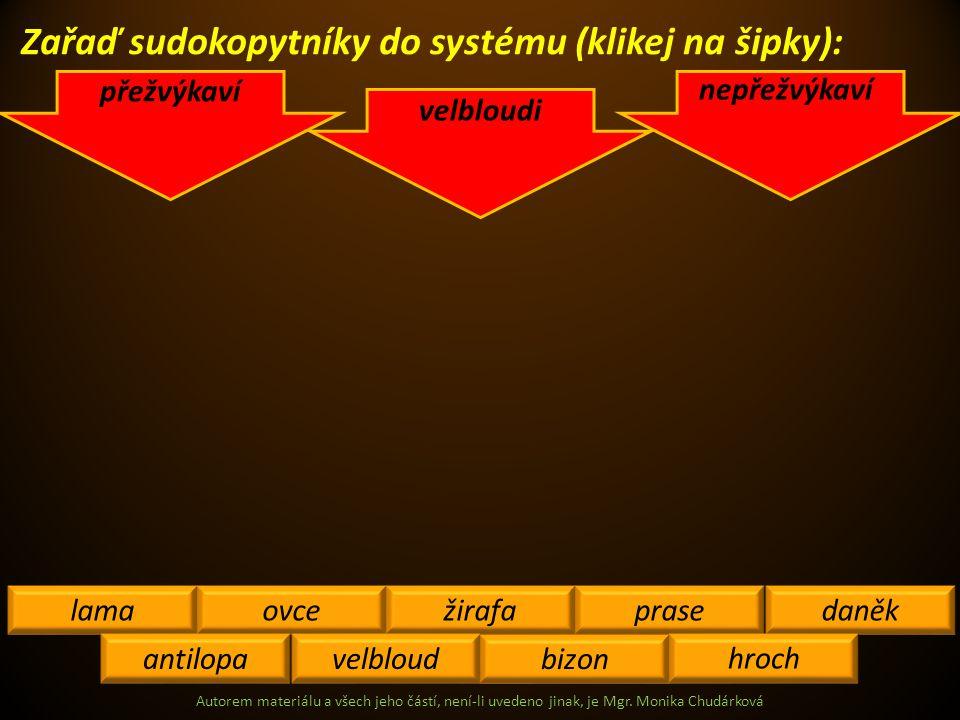 Zařaď sudokopytníky do systému (klikej na šipky):