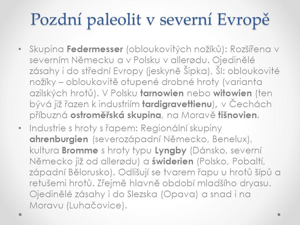 Pozdní paleolit v severní Evropě