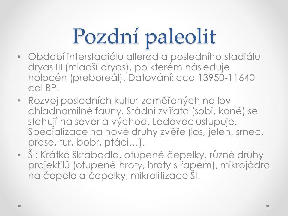 Pozdní paleolit