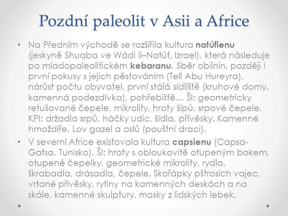 Pozdní paleolit v Asii a Africe