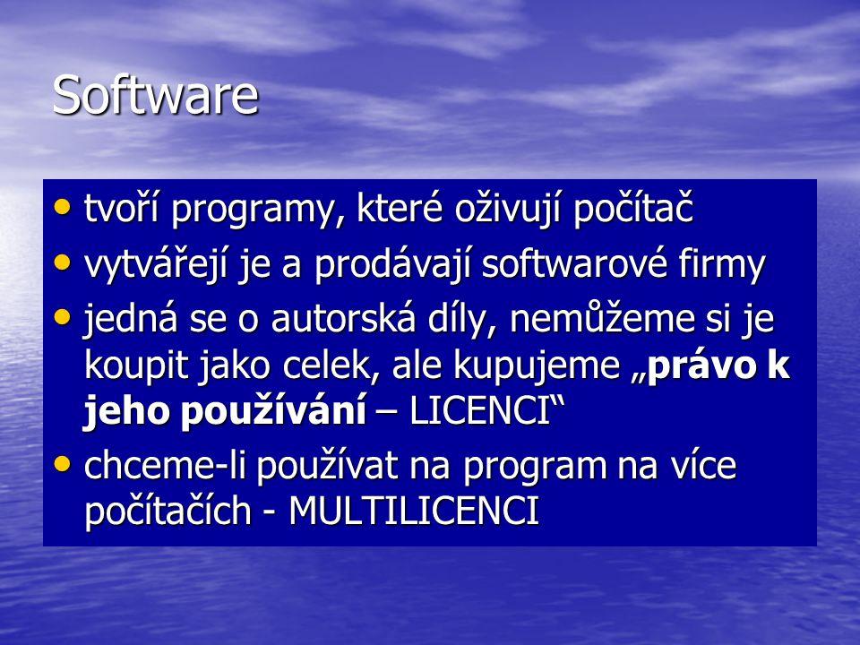 Software tvoří programy, které oživují počítač