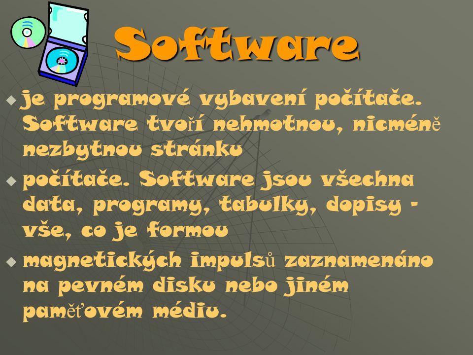 Software je programové vybavení počítače. Software tvoří nehmotnou, nicméně nezbytnou stránku.