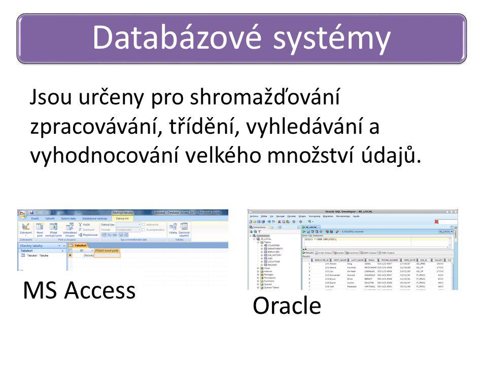Databázové systémy MS Access Oracle