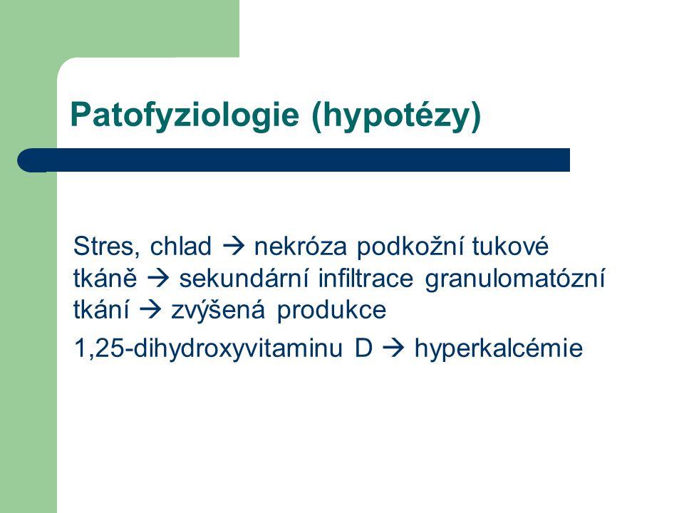 Patofyziologie (hypotézy)