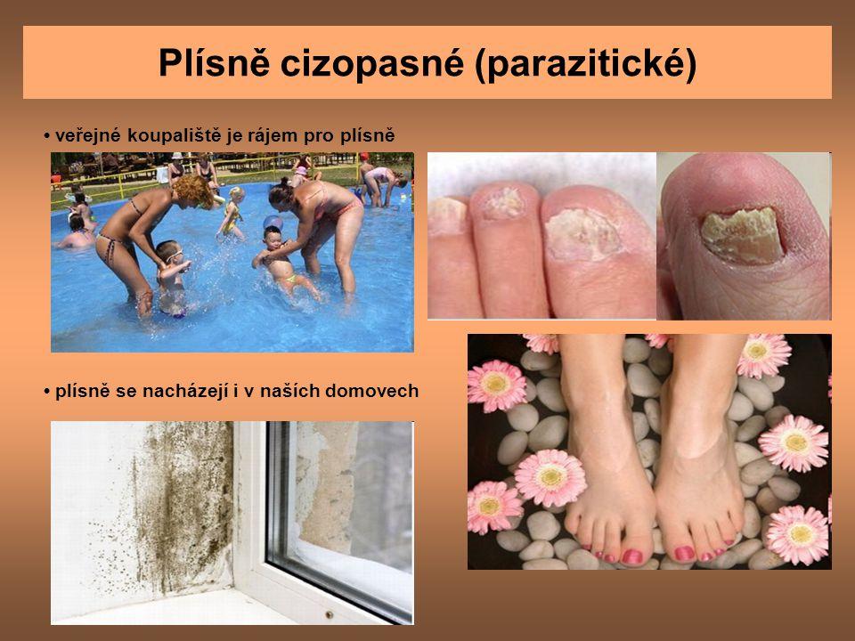 Plísně cizopasné (parazitické)