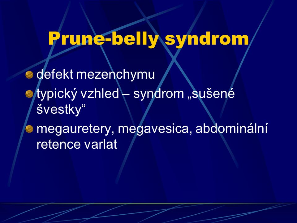 Prune-belly syndrom defekt mezenchymu