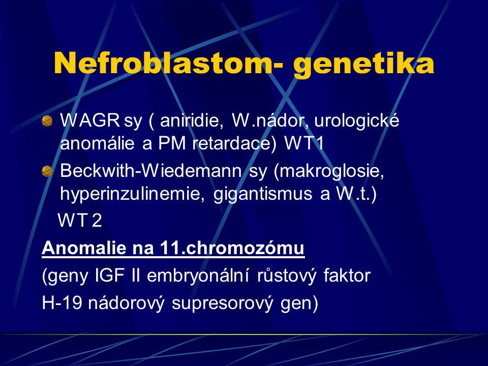 Nefroblastom- genetika